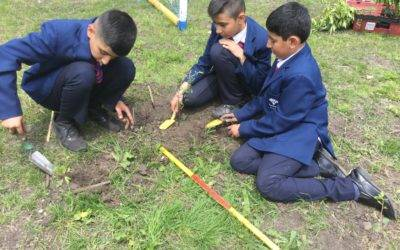 Pupils' planting adds more 'bark' to Barkerend!